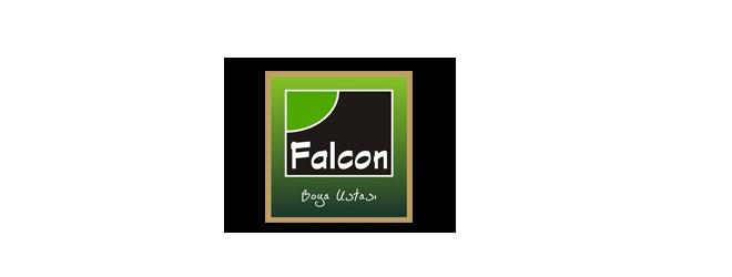 falcon boya ustasi